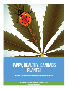 Happy, Healthy Cannabis Plants! Pests, Diseases & Nutrient Disorders Guide