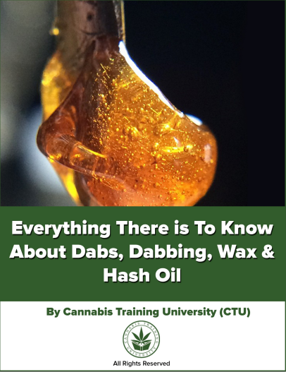 Everything There is To Know About Dabs, Dabbing, Wax, & Hash Oil