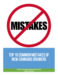 Top 10 Common Mistakes of New Cannabis Growers