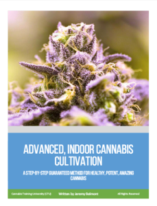 Advanced Indoor Cannabis Cultivation